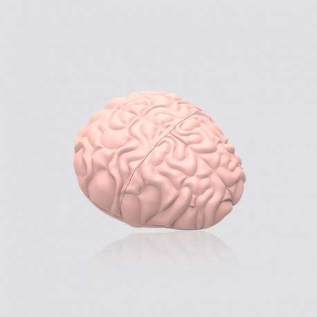 Custom PVC Brain Shaped USB